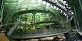 775px-California_Academy_of_Sciences_Indoor_Rainforest.jpg