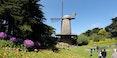 Dutch Windmill and Tulip Garden.jpg