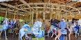 Golden_Gate_Park_carousel_Photo-joe-mabel-1280.jpg