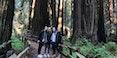 muir-giant-redwoods-national-park-tours-san-francisco-jeep-tours-1940.jpg